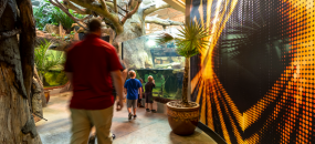 Zoo Knoxville: Amphibian and Reptile Conservation Campus